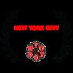 Landscape Winner New York City Drone Film Festival